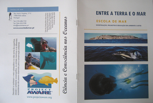 """""""Between Earth and Sea"""", the School of Sea, an awareness and educational programme"""