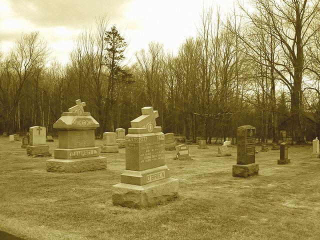 Immaculate heart of Mary cemetery - Churubusco. NY. USA.  March  29th 2009  -   O ' Brien.....Sepia.