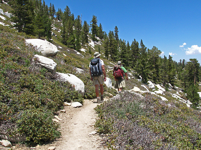 Trail to San Jacinto Peak (0466)