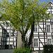 Fachwerkhäuser in Delbrück - Westfalen