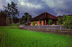 "Country house of our ""home stay"""