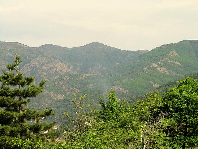 les monts du Haut Languedoc