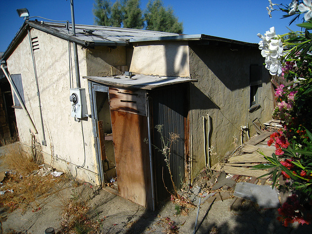 66200 4th Street - Backyard (2916)
