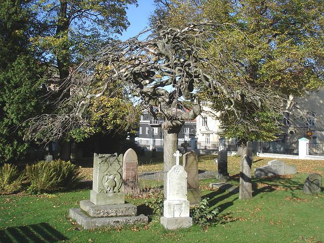 Cimetière de Ängelholm - Suède / Sweden  /  23 octobre 2008