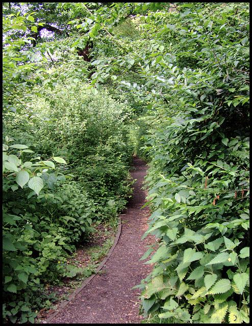 Einsamer Schleichweg / Lonesomely secret-path