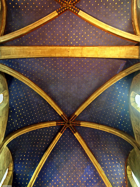 P6237945ac Neuchatel Dom Blue Ceilings with Stars as in St Chapel of Paris