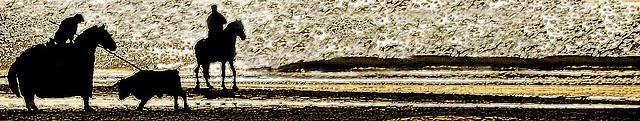 bravoure de plage