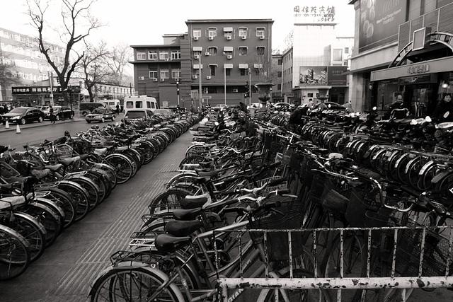 Xidan cycles I