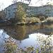 Apartments building and rowboat by the river /  Édifice à appartements avec chaloupe et canards