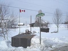 Twin maples farm - St-Benoit-du-lac-  Québec- Canada - 7 février 2009 - Sans flash