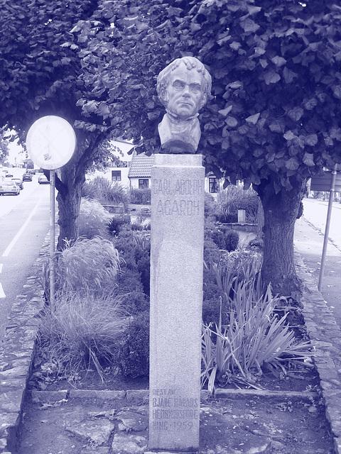 La tête de Carl !  Carl Adolph Agardh head statue- Båstad.  Suède - Sweden.   21-10-2008 - Carl Adolph Agardh.  Colorisé en bleu.