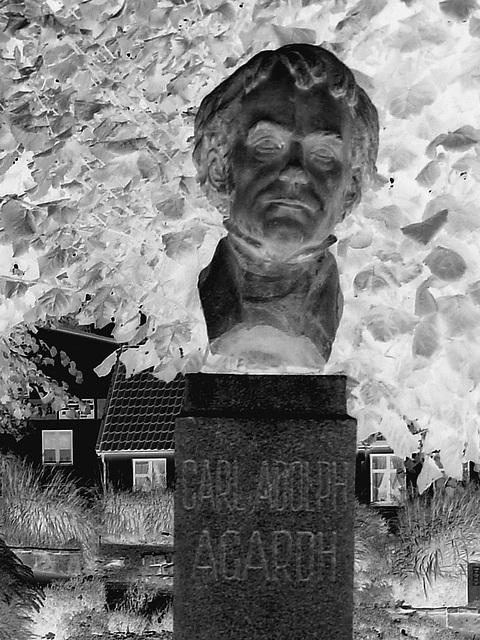 La tête de Carl !  Carl Adolph Agardh head statue- Båstad.  Suède - Sweden.   21-10-2008 -  Négatif en N & B