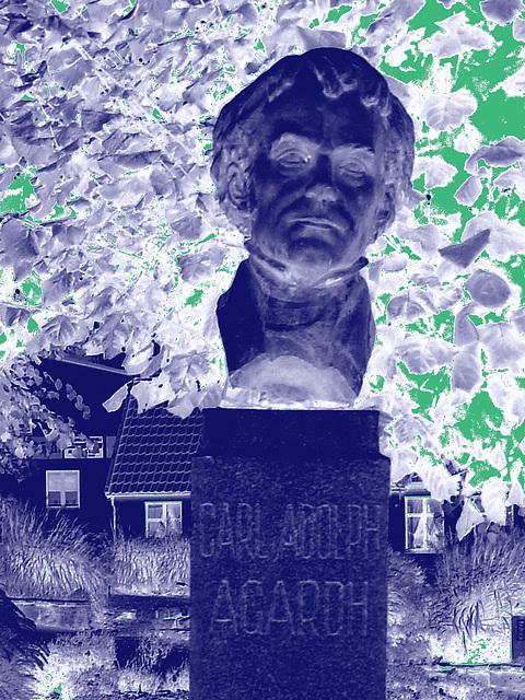 La tête de Carl !  Carl Adolph Agardh head statue- Båstad.  Suède - Sweden.   21-10-2008 -Négatif et touche de vert