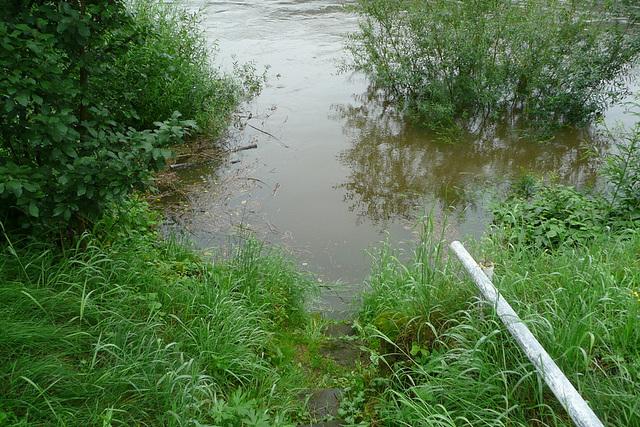 Hochwasser - Elbe 30. Juni 2009