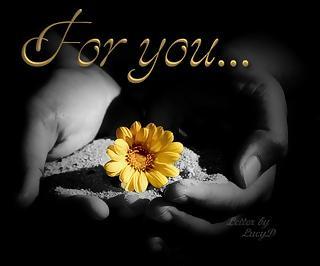 Une fleur for you