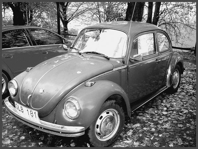 Volkswagen beetle - Stationnement de la gare de Båstad's train station parking lot .  Sweden / Suède - 22 octobre 2008-  N & B