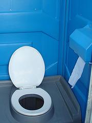 POUR LES ANONYMES ET LES DISCIPLES DU GRAND CLUB DES DOIGTS PARALYSÉS / FOR THE ANONYMOUS LURKERS WHO NEVER COMMENT - Paradis bleu et trône blanc / Blue paradise and white throne
