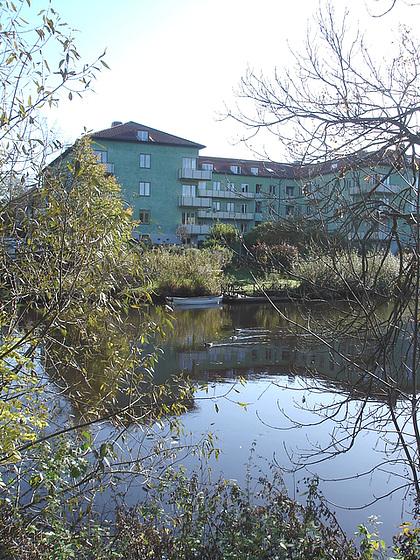 Canards et chaloupe sur la rivière  / Ducks & rowboat by the river  -  Ängelholm / Suède - Sweden.   23 octobre 2008