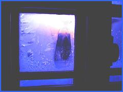 Fenêtre de ma chambre / Room's window - 7-02-2009- Couleurs ravivées