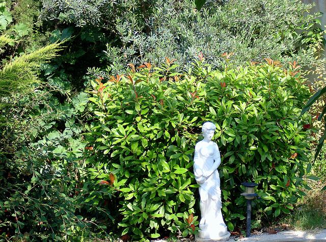 la statue au fond du jardin