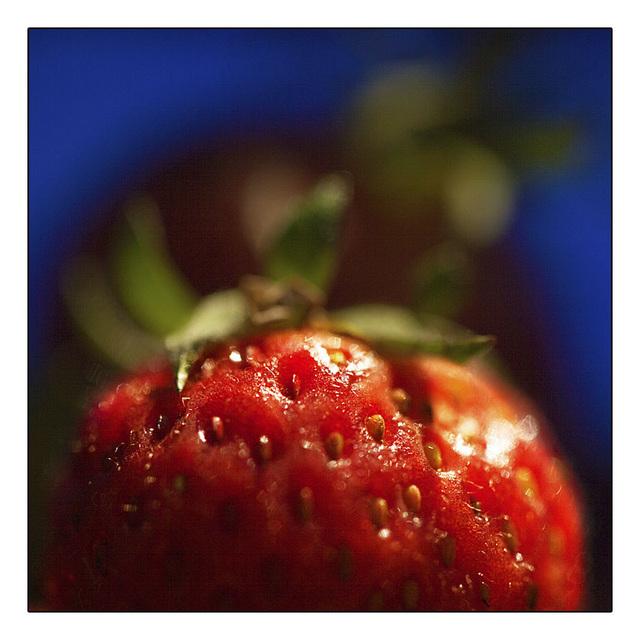 Fruit #4