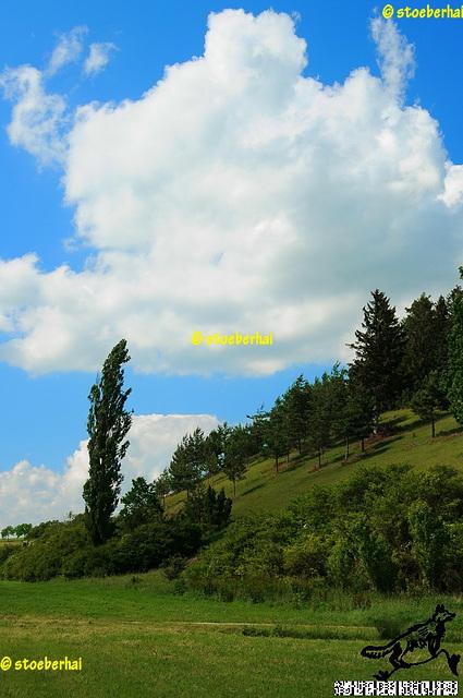 Landschaft westlich Treuchtlingen