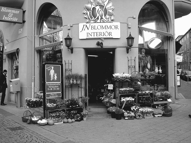 - Carrefour floral à la suédoise / JN Blommor interiör -  Helsingborg  /  Suède - Sweden.  22 octobre 2008 Noir et blanc