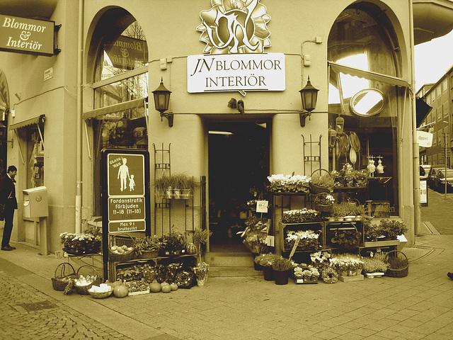 - Carrefour floral à la suédoise / JN Blommor interiör -  Helsingborg  /  Suède - Sweden.  22 octobre 2008 Sepia