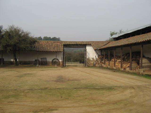 El patio, Fundo Mallermo, Litueche