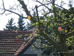 Ostern im Sonnenschein