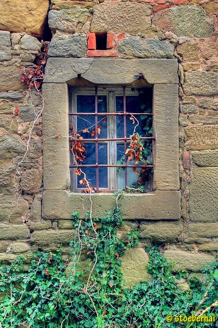 Fenster am Gutshof