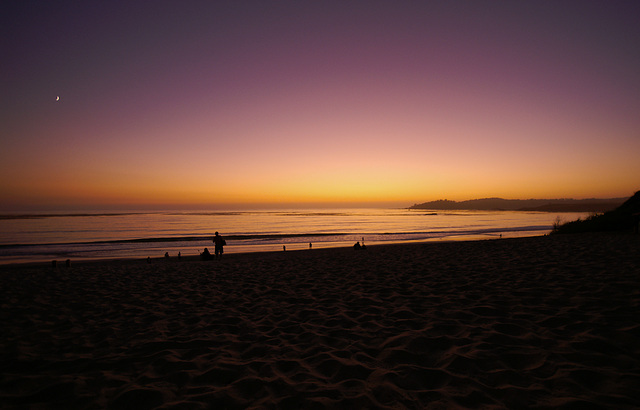I wonder if it was a dream -  california dreaming