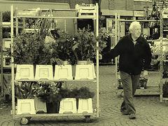 L' Homme et ses plantes - Fin d'un autre quart de travail