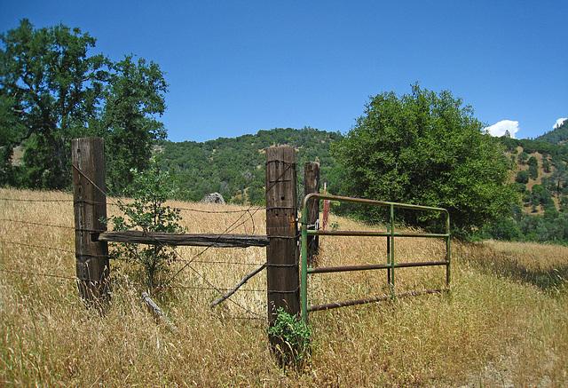 Gate (2528)