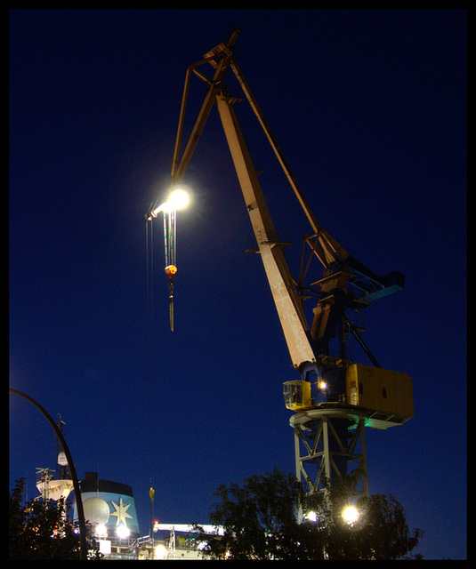 Crane in the night