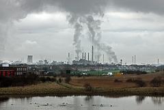 Wilton chemical landscape
