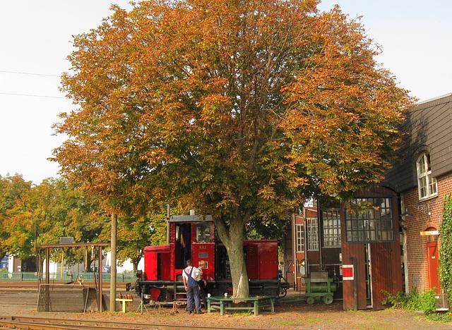 Early Autumn Impression