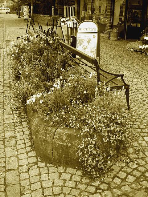Scène de trottoir fleuri interfloré /  Interflore store scenery.   . Båstad .  Suède /  Sweden.  21 octobre 2008.  Sepia