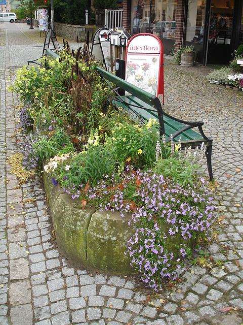 Scène de trottoir fleuri interfloré /  Interflore store scenery.   . Båstad .  Suède /  Sweden.  21 octobre 2008.