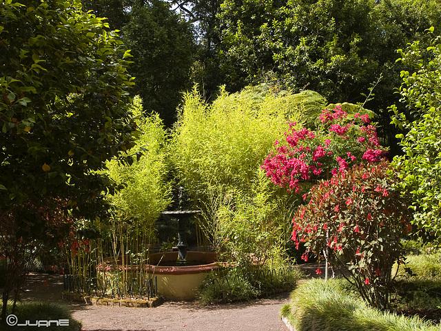 Jardin Romantico- Osorio