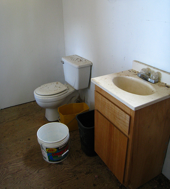 Nelson Cove Old House Toilet (2575)