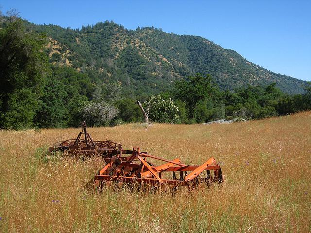 Old Farm Equipment (2671)