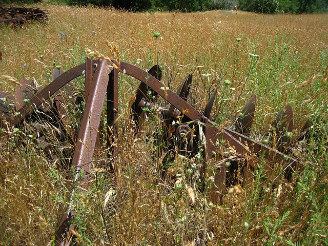 Old Farm Machinery (2530)