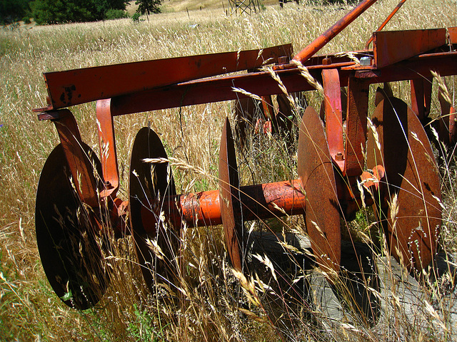 Old Farm Machinery (2532)