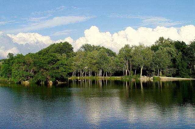 les arbres se mirent dans le lac sous une couronne de nuages