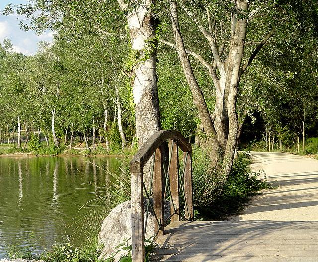 promenade autour du lac de la Tuilière, un petit pont