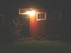 Discrétion fermière - Farm discretion. Båstad.  Suède /  Sweden..   23-10-2008