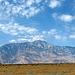 Mt. San Jacinto (0345)