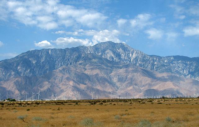 Mt. San Jacinto (0346)