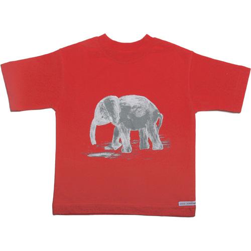 Elefanto kaj knabo